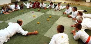 Aikido Ballspiele